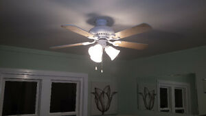 ~ * ~ Ceiling Fans with Lights * ~ *