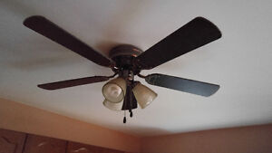 2 Ceiling Fans with 3 Lights