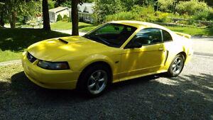 2001 Ford Mustang Gt. , V-8, 4,6 litres Coupé (2 portes)
