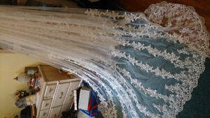 3m cathedral lace veil
