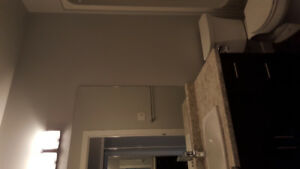 New Condo- room for rent