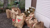 Fall cleanup and Lawn Care