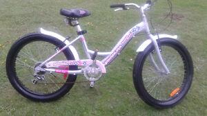 beau bicycle a gros p^neu