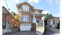 Basement Apartment For Rent all inclusive Dufferin / Holmesdale