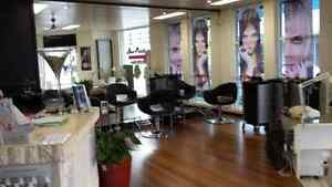 Hairdressing Salon For Sale Nowra N S W Nowra Nowra-Bomaderry Preview