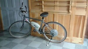 Vélo électrique d'hommes avec moteur