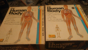 Human Anatomy Kits