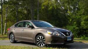 2012 Nissan Altima (Near Mint Condition)