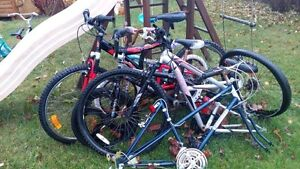 Bicycles for Free - Take them ALL