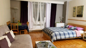 Quiet and large furnished studio all included