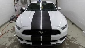 Ford Mustang Stripes Decals