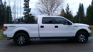 2014 F-150 For Sale Or Take Over Payments