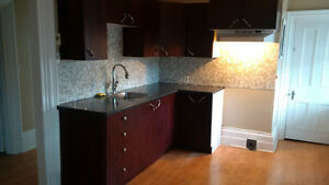 Bright 2 bed apart kitchen remodel Vankleek Hill near Hawkesbury