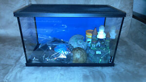 10 Gallon tank with Accesories