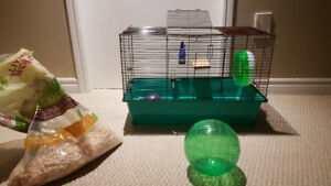Hamster house and accessories