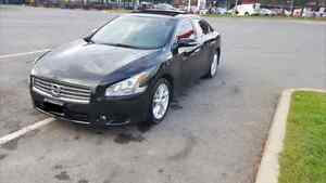 2009 Nissan Maxima **Loaded / Panoramic/ Leather**
