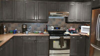 Painters  NOUVEAU LOOK - kitchen/bathroom CABINETS
