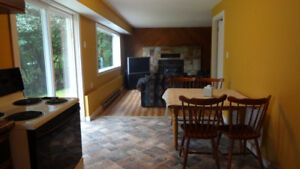 1 bedroom apartment in private house. Ground level