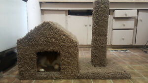 Cat House & Scratching Post