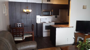 All inclusive, fully furnished, on river, walk DOWNTOWN OTTAWA Gatineau Ottawa / Gatineau Area image 10