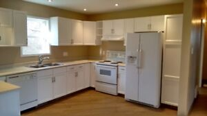 5+ acres with 4 bed/2.5 bath home in Springfield FOR RENT