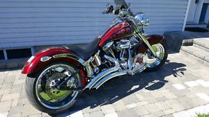 Custom Harley softail
