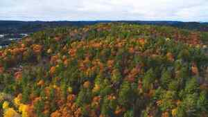 Wakefield hill top lots for sale