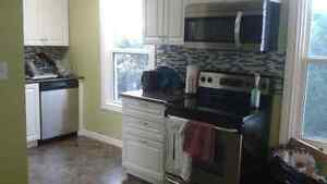 Beautiful 2 bed Apt - pets accepted with conditions