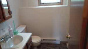 Newly renovated 1 bedroom apartment in Amherst