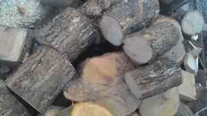 FIREWOOD chunks or split, cut to desired lenght