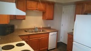 Recently Renovated 2 Bedroom Townhouse in Yorkton