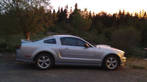 2007 Ford Mustang GT V8 4.6L  Coupe (2 door)