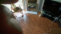 Professional Renovator/Handyman Can Do It All