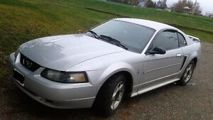 Awesome 2003 Ford Mustang, only 203,000 km's