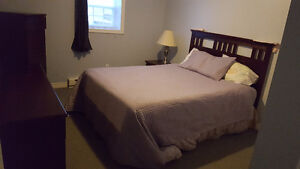 2 bed apt short rental Nr Marble Corner Brook and Deer Lake