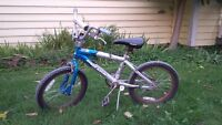 My son is selling his bike