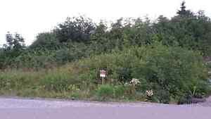 Land  for Sale -Benoit's Cove