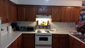 Great investment opportunity student rental. Easy to rent Kitchener / Waterloo Kitchener Area image 4
