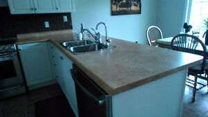 Countertops and Sink - low price for quick sale!