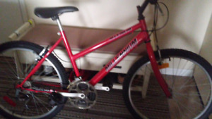 Lady,s bike for sale