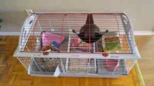 Package deal cages accessoires