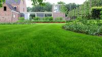 Pose de pelouse/paysagement