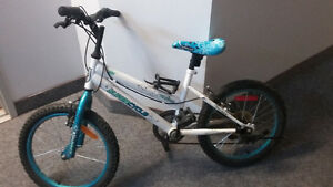 "Kid's bike 18"" great condition"
