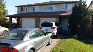 Great investment opportunity student rental. Easy to rent Kitchener / Waterloo Kitchener Area image 1