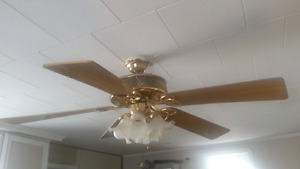 SUMMERS COMMING !! Really good ceiling fan