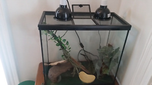 Reptile tank message for details on everything inside