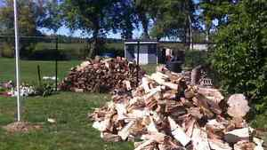 I have a wood splitter if you need your wood split.. Cambridge Kitchener Area image 5