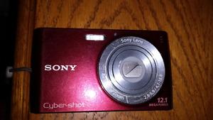 Sony Cyber Shot Model DSC 510