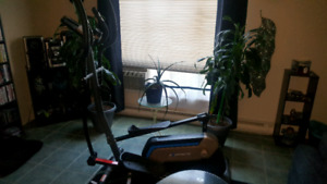 "18"" Stride elliptical, Almost new ( REDUCED)"