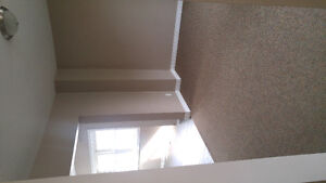 Newly Renovated full home $1400 plus